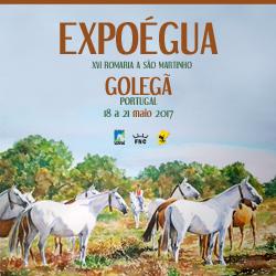 250x250 ExpoÉgua 2017.jpg